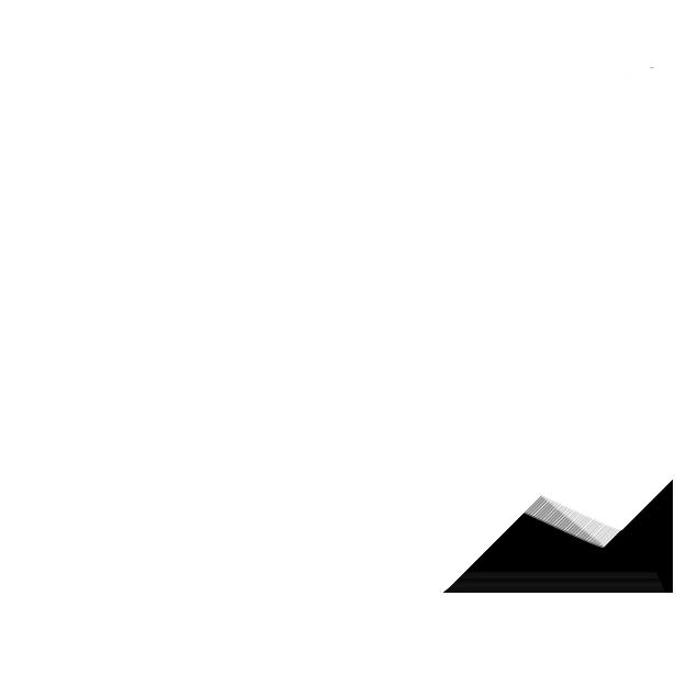 Fabrica Cacti